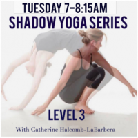 Shadow Yoga Tue. 7-8:15AM