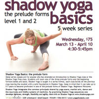 Shadow Yoga Basics Wed 4:30PM