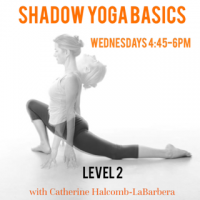 Shadow Basics Wed 4:45PM